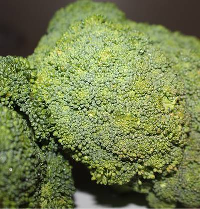Exam Food: Broccoli